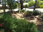 images/earthy_waterwise_garden_margaret_river/IMG_0245.jpg
